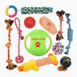 teething toys for your puppy