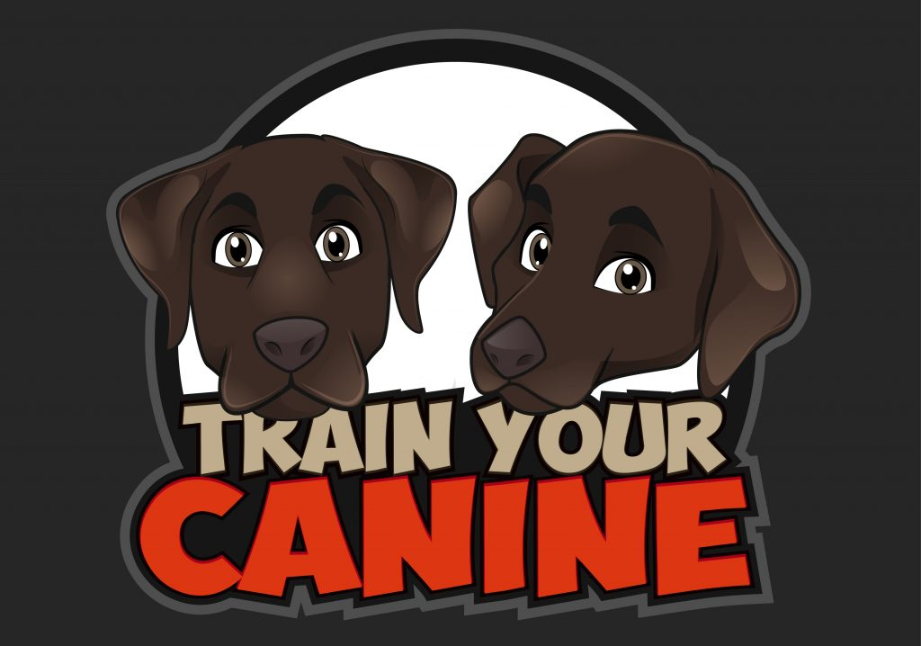 dog training tips to train your canine