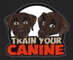 Train Your Canine | Dog Training Help and Reviews for 2019
