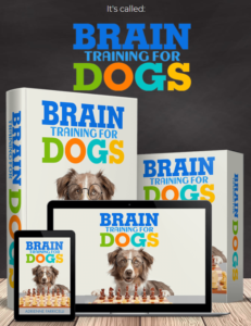 Braintraining4dogs review
